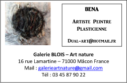 visuel bena art nature macon